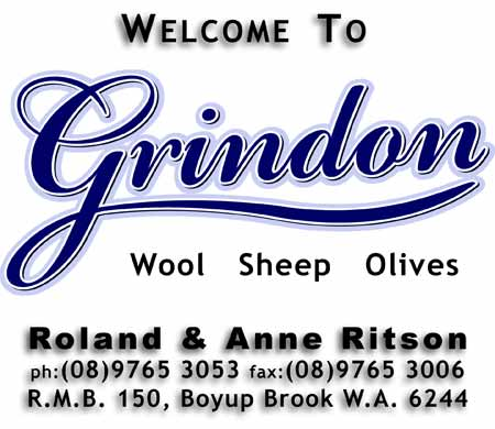 Welcome to Grindon